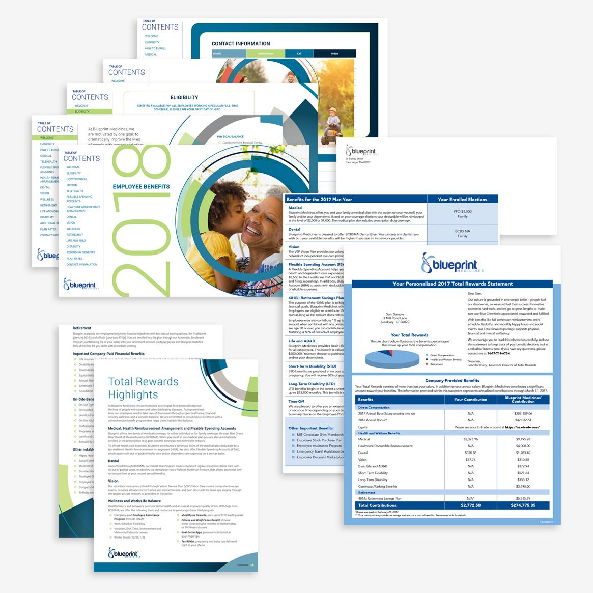 Total compensation portfolio categories spitfire communications blueprint medicines malvernweather Gallery